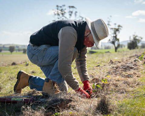 webinar-planting 2